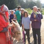 17 Donkey